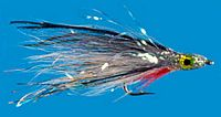 epoxy-bait-fish.jpg